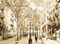 barcelona-neighbourhoods-neighborhoods-zones-areas-barrios-districts-born-borne